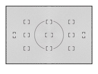 Nikon Сменный фокусировочный экран B для D2